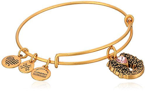 Alex and Ani Fortune's Favor Rafaelian Gold Bangle Bracelet by Alex and Ani