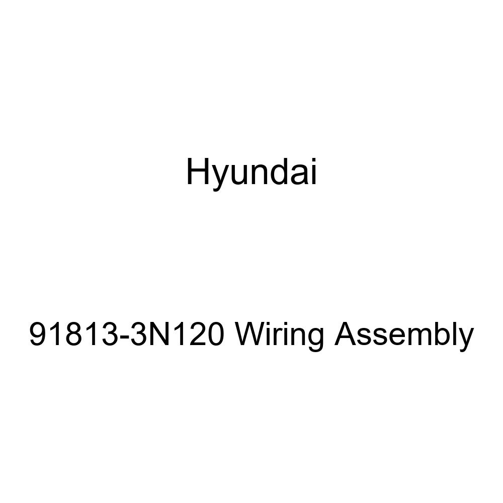 Genuine Hyundai 91813-3N120 Wiring Assembly
