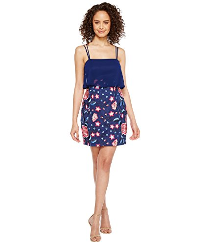 [アイダンマトックス] Aidan Mattox レディース Chiffon and Embroidered Popover with Skirt ドレス [並行輸入品]