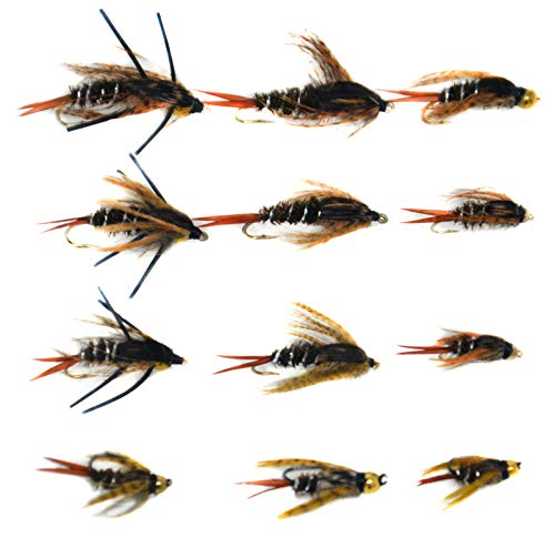 Outdoor Planet 12Pcs 20 Incher Attractor Nymph/Stonefly/Attractor Nymph/Prospecting Nymphs/Mayfly Nymph/Wet Flies for Trout Fly Fishing Flies Lure Assortment