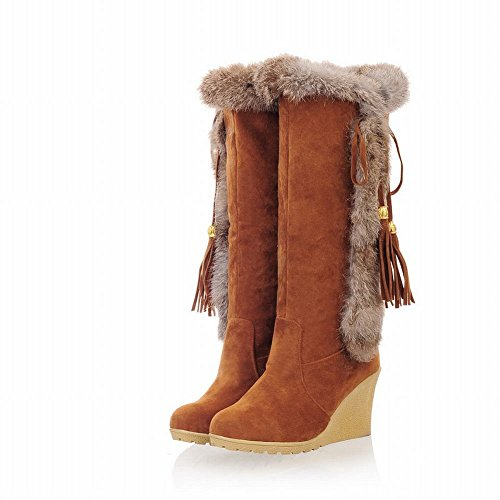 Carol Schoenen Dames Winter Gebruik Bowknots Kwasten Fashion Warm Sleehak Snow Boots Brown
