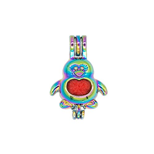 Bruin 10pcs Rainbow Penguin Oyster Pearl Bead Cages Pendant Essential Oil Diffuser Locket Craft Jewelry Making Necklace DIY