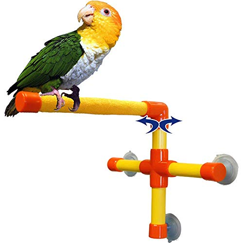 Zoo-Max Shower and Window Perch Bird Toy,