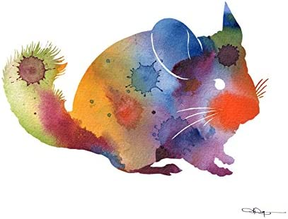 Chinchilla Abstract Watercolor Painting Art Print by Artist DJ Rogers