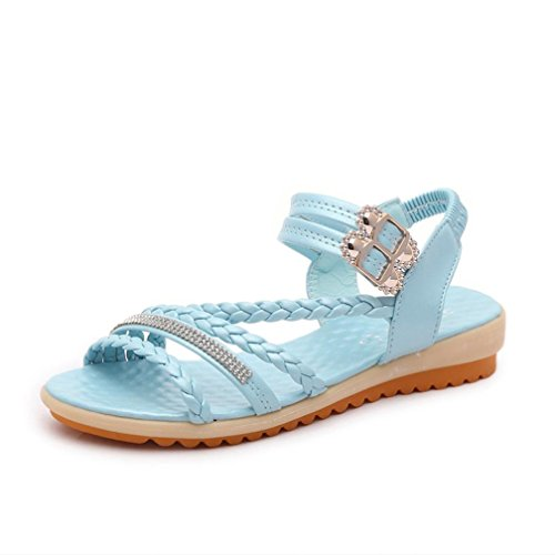 Deesee (tm) Damesmode Zomerhelling Met Slippers Sandalen Instappers Schoenen Blauw
