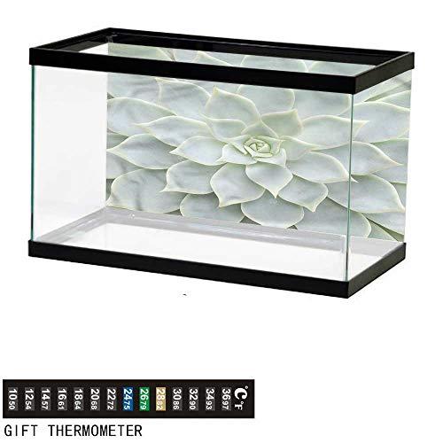 bybyhome Fish Tank Backdrop Cactus,Cactus Flowers Photo,Aquarium Background,30