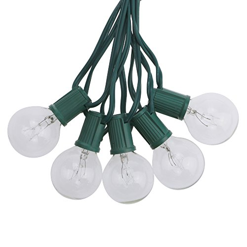 - G40 Globe String Lights 25Ft for Patio Garden Indoor/Outdoor Decor with 25 Clear Bulbs 120V GMY Lighting (Green Wire)