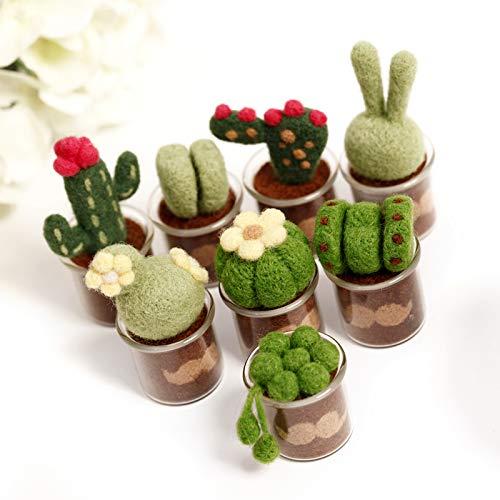 Winky Shiba Co. Succulent Cactus Wool Needle Felt Felting Fieltro Kit with Glass Pots