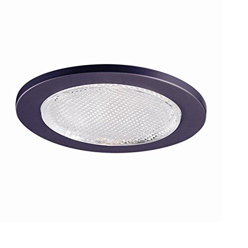 - All-Pro 951TBZS 4-Inch Trim Lensed Showerlight, Tuscan Bronze Trim with Glass Lens
