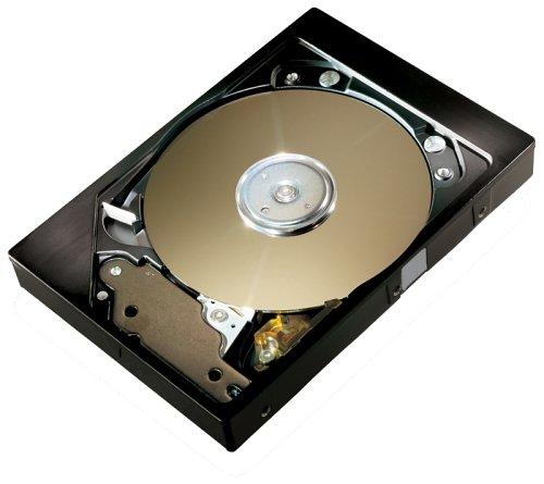 2mb Cache Ide 7200rpm (Maxtor DiamondMax 6E030L0 30 GB 7200 rpm ATA 133 IDE 2MB Cache 3.5