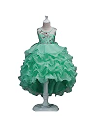 Girls Ruffles Embroidered Flower Party Wedding Dress