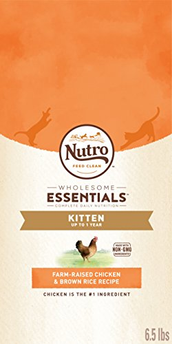 Nutro Kitten Dry Cat Food Chicken 6.5 lb. bag