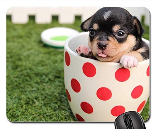 Mouse Pads - Chihuahua Dog Puppy Cute Pet Breed Animal
