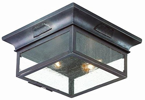 Troy Lighting Newton 2-Light Outdoor Flush Mount - Old Bronze Finish with Clear Seeded (Old Bronze Troy Lighting)