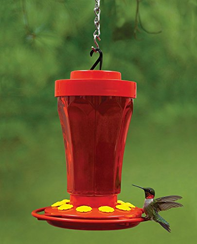 72 Ounce Hummingbird Feeder - 6