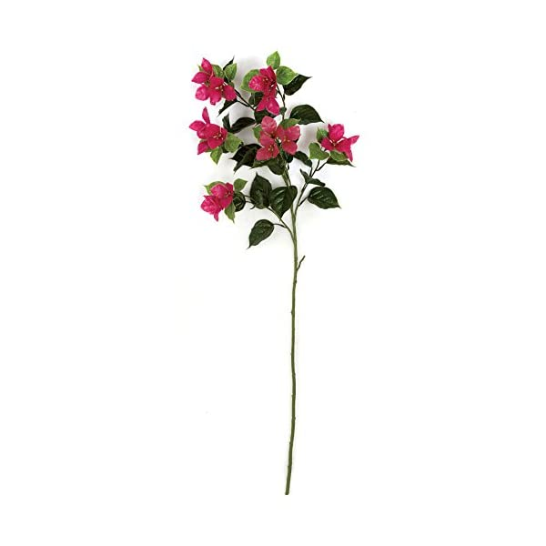 SilksAreForever 45″ UV-Proof Outdoor Artificial Bougainvillea Flower Spray -Beauty (Pack of 6)