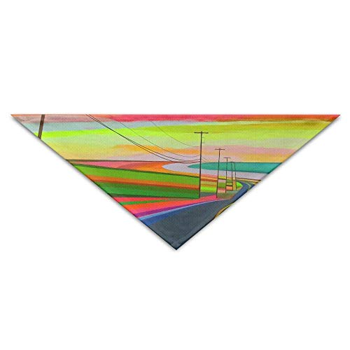 Highway Triangle (DKFDS Abstract Highway Oil Painting Art Triangle Pet Scarf Dog Bandana Pet Collars for Dog Cat - Birthday Bandana Bibs Triangle Head Scarfs Accessories)