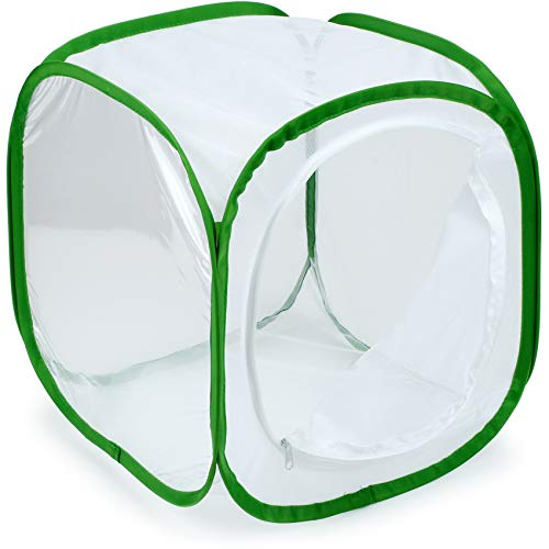 RESTCLOUD Insect and Butterfly Habitat Cage Terrarium Pop-up 12 X 12 X 12 - 4 Center Library Piece