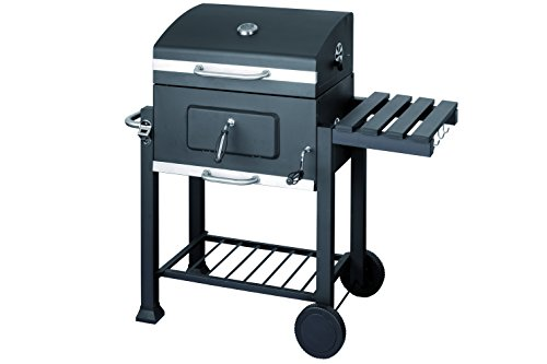 holzkohle grillwagen test kleinster mobiler gasgrill. Black Bedroom Furniture Sets. Home Design Ideas