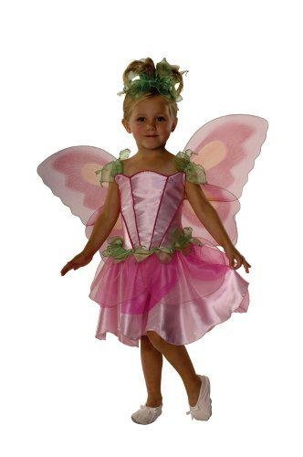 Fairies Costumes For Toddlers (Rubies Springtime Fairy, Pink, Toddler)