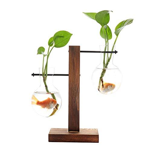 - Takefuns Hydroponic Vase Vintage Desktop Plant Terrarium Planter Bulb Vase Water Planting Propagation Glass Vase Libra Planter Hydroponics Plants with Retro Wooden Stand Home Garden Wedding Decor