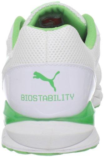 Puma agilidad Xt Elite El entrenamiento cruzado de zapatos White/Puma Silver/Summer Green