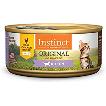 Amazon Com Natural Balance Kitten Formula Canned Wet Cat