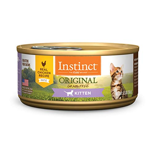 Instinct Original Kitten Grain Free Real Chicken Recipe Natural Wet Canned Cat Food by Nature's Variety, 5.5 oz. Cans (Case of 12) (Chicken Soup For The Soul Cat Food Reviews)