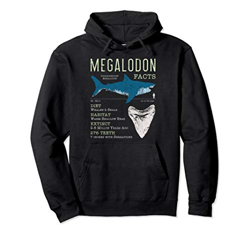 Megalodon Facts Hoodie Meg Tooth Fun Prehistoric Sharks Gift