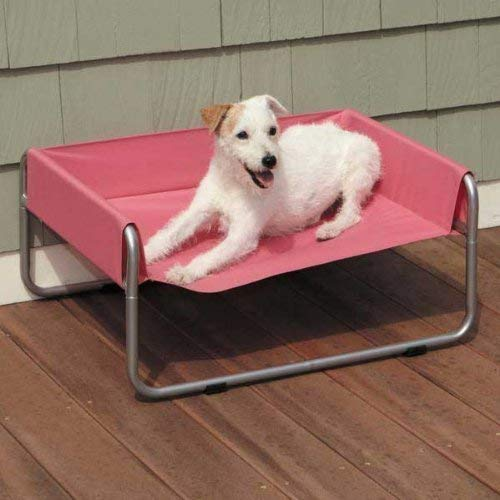 Guardian Gear Insect Shield Pet Cot for Dogs and Cats, Small, (Pet Gear Pet Cot)