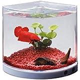 Dophin T-101 Aquarium Betta Fish Mini Tank Pack Of 1
