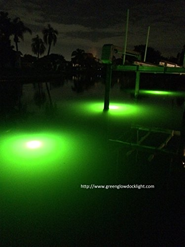Bright Green Underwater Fishing Lights, Double Lamp Kit with 50' Cords Saltwater or Fresh by Green Glow Dock Light (Image #3)