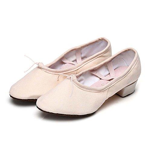 Roymall Dames Latin Dansschoenen Model 101 Pink-1