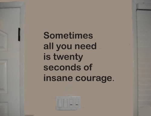 Sometimes All You Need Is 20 Seconds Of Insane Courage Wall Quote