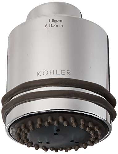 Kohler 86101-CP Body Spray