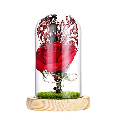 icro Landscape Artificial Romantic Simulation Rose Home Furnishing Valentine's Day Lovely Gift (Red) ()