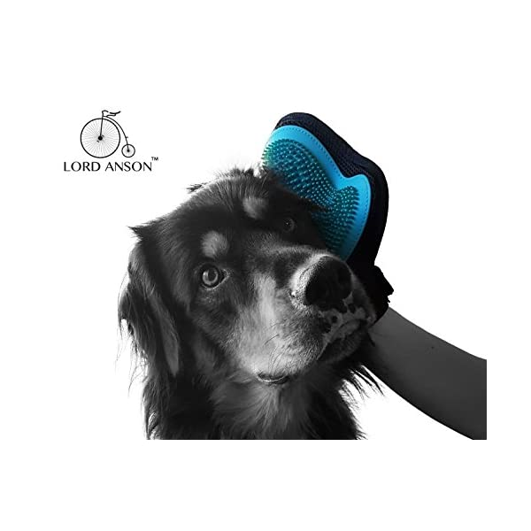 Lord Anson™ Kosy Mit - One Size Fits All Silicone Grooming Glove for Short and Long Haired Dogs - Dog Grooming Supplies - Deshedding and Bathing Glove 2