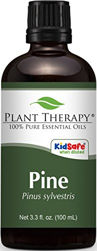 Plant Therapy Pine Essential Oil. 100% Pure, Undiluted, Therapeutic Grade. 100 mL (3.3 Ounce).