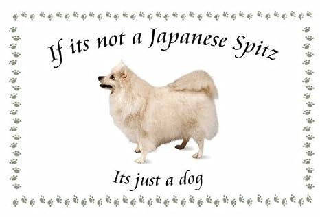 Spitz japonés - perro flashsellerz Llaveros - si no es ...