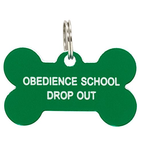 Obedience School Drop Out Dog Tag Pet Collar Tag Charm Jewelry - Say What?