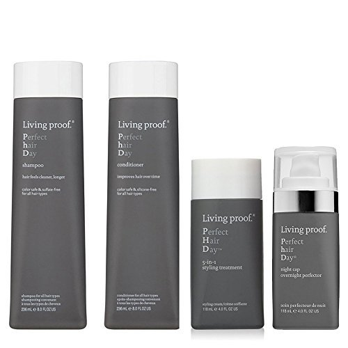 Bundle - 4 items: Living Proof Perfect Hair Day Shampoo & Co