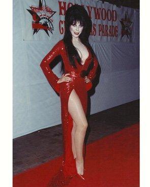 Elvira 8 inch x10 Inch Photo Elvira: Mistress