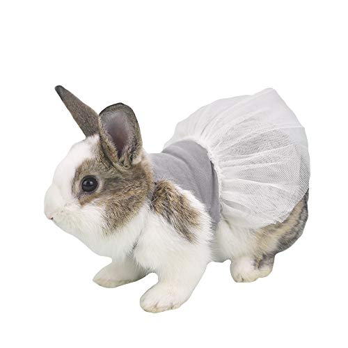 Teacup Dog Dress Clothes (FLAdorepet Bunny Rabbit Guinea Pig Dress Summer Small Milk Mini Dog Cat Tutu Skirt Clothes for Teacup Chihuahua Yorkie Small Animal Accessories (6(Bust 8.6 inch), Grey))