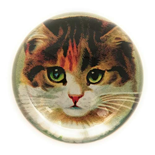 Value Arts Victorian Tabby Cat Glass Dome Paperweight, 3 Inch Diameter