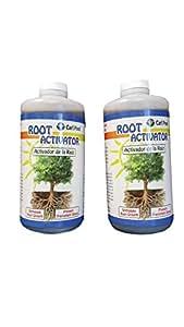 Amazon Com Carl Pool Root Activator 32 Oz 2 Pack