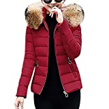 Women Winter Warm Short Slim Coat Ladies Long Sleeve Solid Color Hooded Cotton-Padded Jackets Fashion Parka Outwear Size 10-18 (Wine, M=(10 UK))