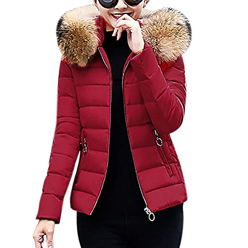 (YOcheerful Women Down Coats Down Jacket Warm Winter Eiderdown Garment Coat Gilet Jacket)
