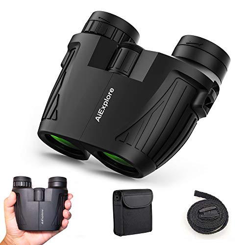 12x25 Compact Binoculars for Adults and Kids,  Folding Waterproof Mini Lightweight Binoculars Easy Focus with Low Light Night Vision for Hunting, Bird Watching, Hiking, Concert, 2019 New (Best Bird Watching Binoculars 2019)