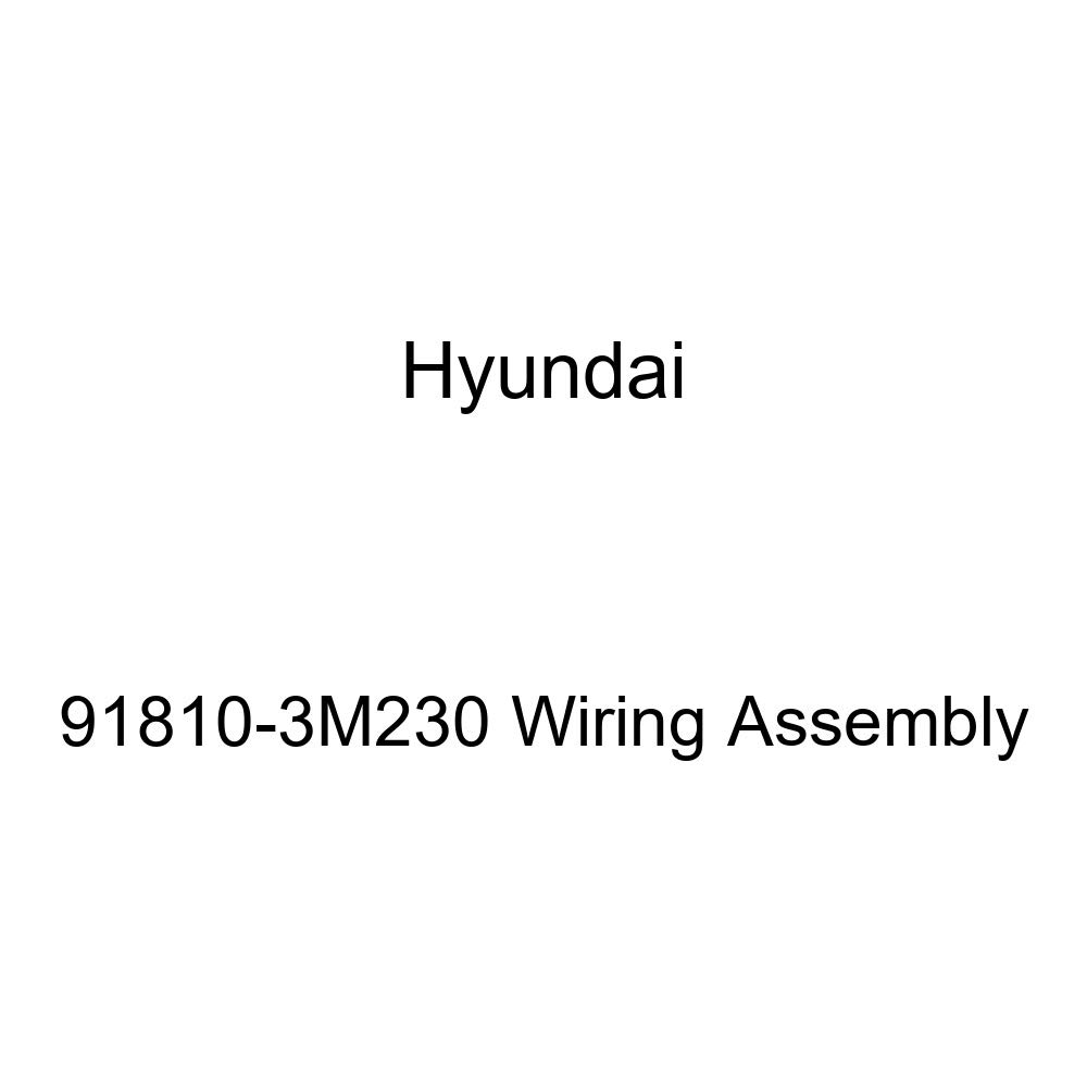 Genuine Hyundai 91810-3M230 Wiring Assembly
