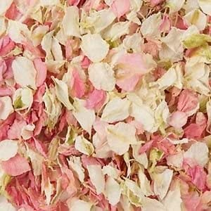 Natural Biodegradable Delphinium Wedding Confetti - 26 Colours ...